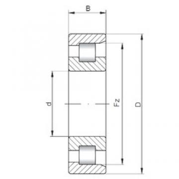 240 mm x 500 mm x 95 mm  ISO NF348 cylindrical roller bearings