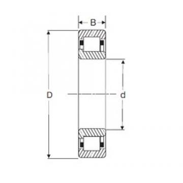 95 mm x 170 mm x 43 mm  SIGMA NJ 2219 cylindrical roller bearings